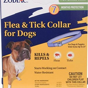 Novartis Capstar Flea Tablets For Dogs And Ca 171 Protect
